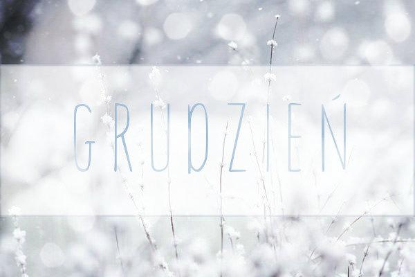 premiery zimowe, zapowiedzi 2015