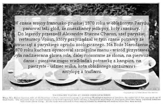 historia jedzenia, historia kuchni