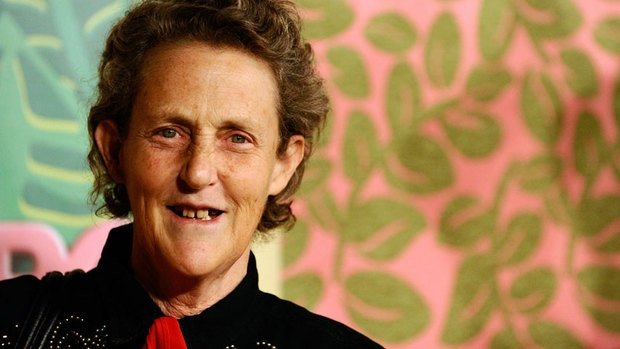 temple grandin, autyzm, autism, thinking in pictures