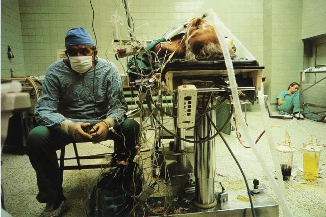religa, transplantacja, medycyna, lekarz